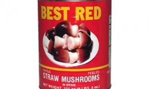 straw-hongos-preparados-2-9-kg